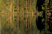 Scenic of trees reflected in Cascade Lake. Lake Tahoe
