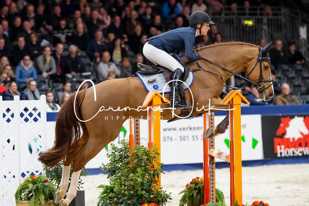 Müller Caroline, GER, Justice HL<br /> KWPN Hengstenkeuring - 's Hertogenbosch 2019<br /> © Hippo Foto - Dirk Caremans<br /> 31/01/2019