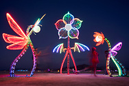 Plantoid Garden: A Blockchain-based Life-form, Featuring the Photo-synthesizer by: Primavera De Filippi & Okhaos Creations from: Paris, France year: 2018 My Burning Man 2018 Photos:<br />