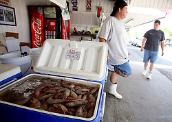07 May 2010. Westwego, Louisiana. <br /> All seafood prices have risen 25% in the past 7 days alone as stocks run low thanks to closed fishing grounds affected by oil pollution. Today was the opening day of the inshore shrimp season. The season was closed before it could open thanks to BP's disastrous environmental catastrophe out in the Gulf of Mexico. Approximately 210,000 barrels of oil per day is leaking uncontrollably into the Gulf because of the explosion and collapse of the Deepwater Horizon drilling platform 46 miles out to sea. The closure of fishing grounds both east and west of the Mississippi river outflow is crippling thousands of local fishermen and all affiliated businesses and families who rely on the seafood industry. None of the shrimp or other seafood offered at the market are fresh catch from today. Everything has been through the IQF (Instant Quick Freeze) process and is seafood caught earlier in the season and brought from storage freezers in Venice and Grand Isle. Stocks are running low. With no new catches, the market will be forced to rely on farmed shrimp shipped in from Texas and Georgia. Local traders refuse to stock Chinese import fish raised with growth hormones, pesticides, fungicides and other contaminants widely found in Chinese farm raised seafood. Many fear losing their jobs and everything they own as a result of BP's Gulf Coast environmental disaster.<br /> Photo credit; Charlie Varley/varleypix.com
