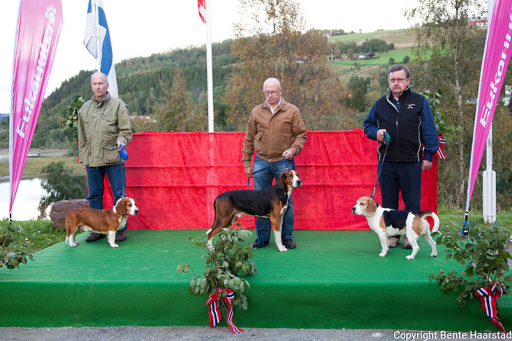 Finland participated with three dogs. From left: Erkki Nurmiranta with the drever, Skogskallets Oscar, Kalevi Rytky with finsk støver, Mannevaaran Mora, and Markku Passisalo with beagle, Kuopusmaan Romu.