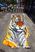 Old Man Creates 3D Tiger