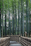 bamboo lined path with stairs at the Adashino Nembutsuji Temple Kyoto
