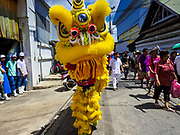 """02 JUNE 2017 - SAMUT SAKHON, THAILAND: Lion dancers perform during the parade for the City Pillar Shrine in Samut Sakhon. The Chaopho Lak Mueang Procession (City Pillar Shrine Procession) is a religious festival that takes place in June in front of city hall in Samut Sakhon. The """"Chaopho Lak Mueang"""" is  placed on a fishing boat and taken across the Tha Chin River from Talat Maha Chai to Tha Chalom in the area of Wat Suwannaram and then paraded through the community before returning to the temple in Samut Sakhon. Samut Sakhon is always known by its historic name of Mahachai.      PHOTO BY JACK KURTZ"""