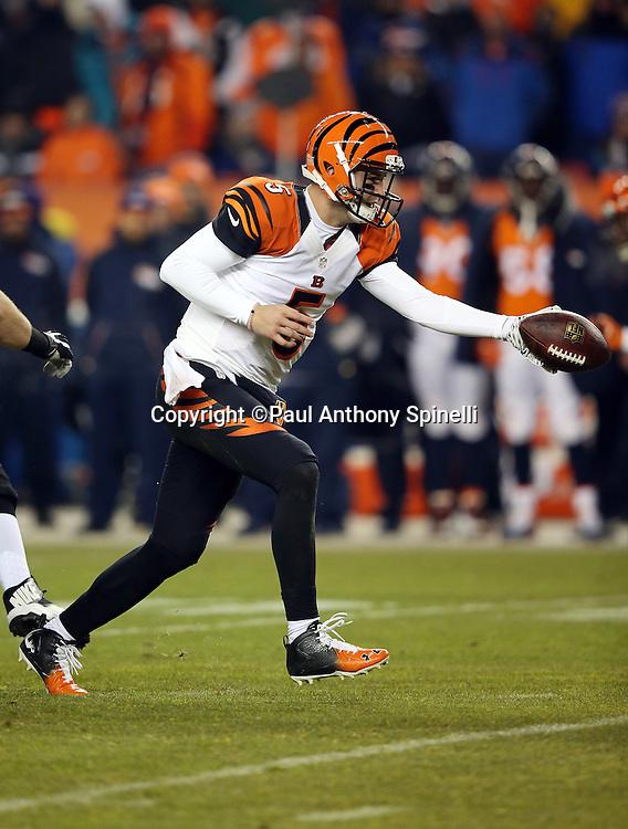 Cincinnati Bengals quarterback AJ McCarron (5) hands off the ball on a running play in the first quarter during the 2015 NFL week 16 regular season football game against the Denver Broncos on Monday, Dec. 28, 2015 in Denver. The Broncos won the game in overtime 20-17. (©Paul Anthony Spinelli)