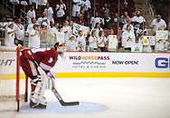 Apr 23, 2010; Glendale, AZ, USA; Fans line up at the glass to watch the Phoenix Coyotes warm up prior to game five in the first round of the 2010 Stanley Cup Playoffs at Jobing.com Arena.  Mandatory Credit: Jennifer Stewart-US PRESSWIRE