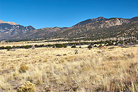 Great Sand Dunes National Park. Panorama (7 of 7). Image taken with a Nikon D2xs camera and 17-35 mm f/2.8 zoom lens (ISO 100, 35 mm, f/11, 1/125 sec).