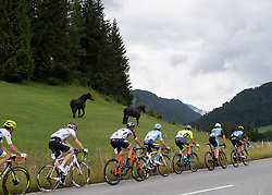 12.07.2019, Kitzbühel, AUT, Ö-Tour, Österreich Radrundfahrt, 6. Etappe, von Kitzbühel nach Kitzbüheler Horn (116,7 km), im Bild Die Ausreissergruppe des Tages // tha attackers of the day during 6th stage from Kitzbühel to Kitzbüheler Horn (116,7 km) of the 2019 Tour of Austria. Kitzbühel, Austria on 2019/07/12. EXPA Pictures © 2019, PhotoCredit: EXPA/ Reinhard Eisenbauer