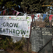 Grow Heathrow - early days.