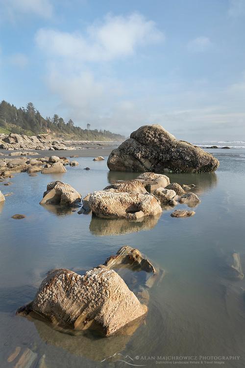 Kalaloch Beach tide pools, Olympic National Park Washington