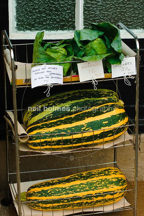 Vegetables on sale for a honesty box, Kilham village East Yorkshire