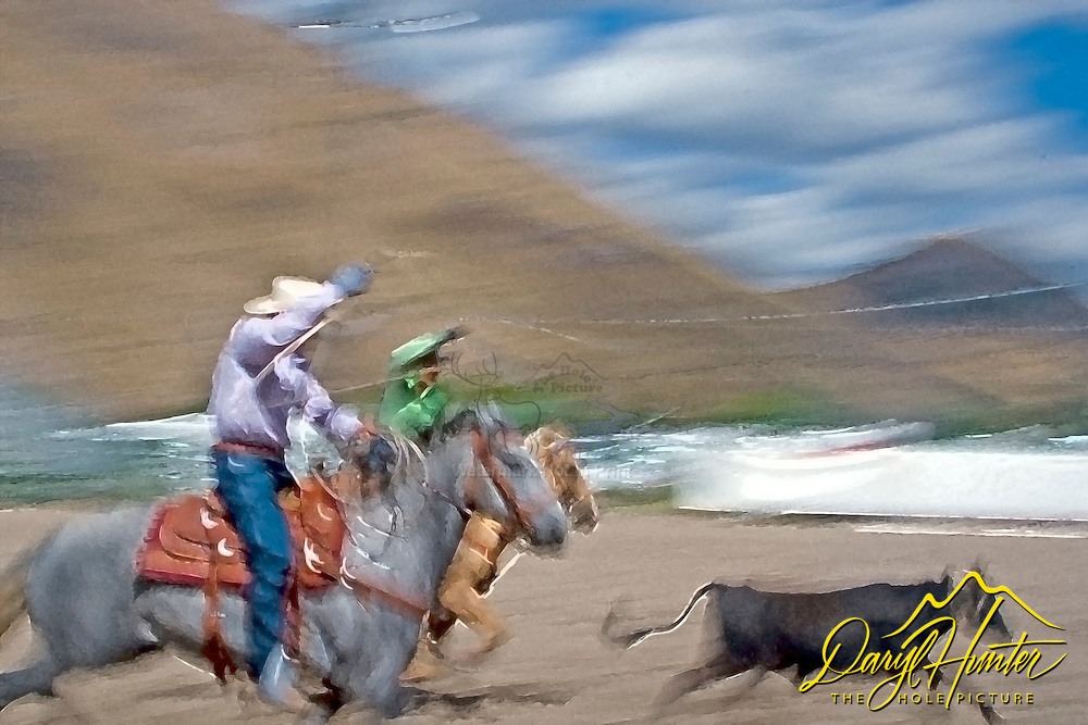 Team Ropers Competing in Jackson Hole Wyoming