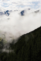 IFTE-NB-007642; Niall Benvie; panorama element; View into the valley around Fliess from Kaunergrat visitor's centre; Austria; Europe; Tirol; vertical; grey blue; forest woodland; 2008; July; summer; fog mist rain cloud; Wild Wonders of Europe Naturpark Kaunergrat