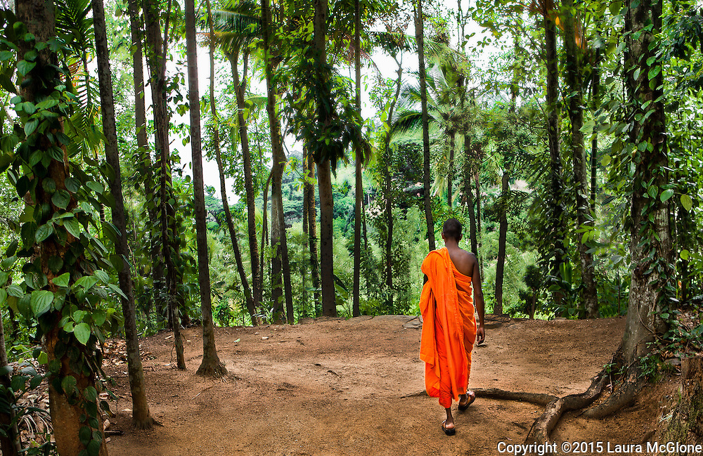 Monk walking in forest, Kandy, Sri Lanka