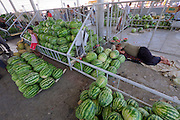 Uzbekistan, Samarqand. Siob Bazaar.<br /> Water melon man having a sleep.