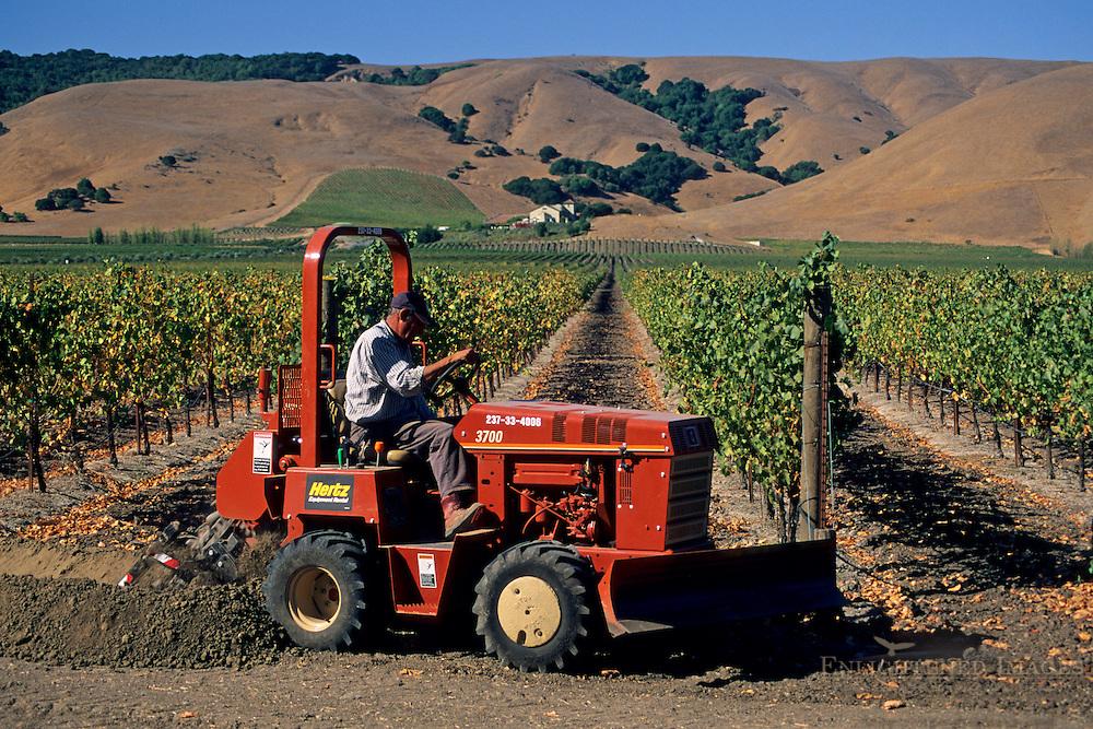 Tractor in vineyards, Gloria Ferrer, Sonoma Valley, Sonoma County, California