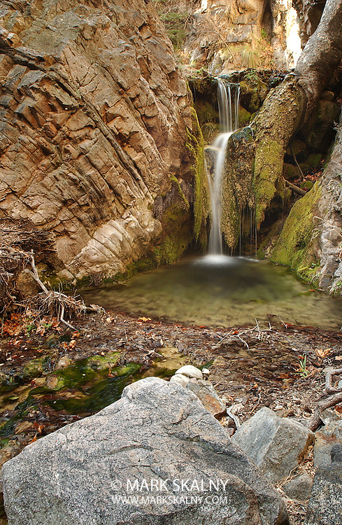 The Nature Conservancy's Ramsey Canyon in Southern Arizona. Photographed For Mark Skalny Photography 1-888-658-3686