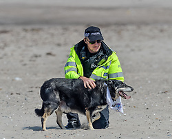 Pictured: Even a dog at the protest was wearing an anti Trump bandana.<br /> <br /> Protesters gathered amid tight security at the Trump Turnberry resort, where President Trump and his wife Melania are staying on their trip to Scotland.<br /> <br /> &copy; Dave Johnston / EEm