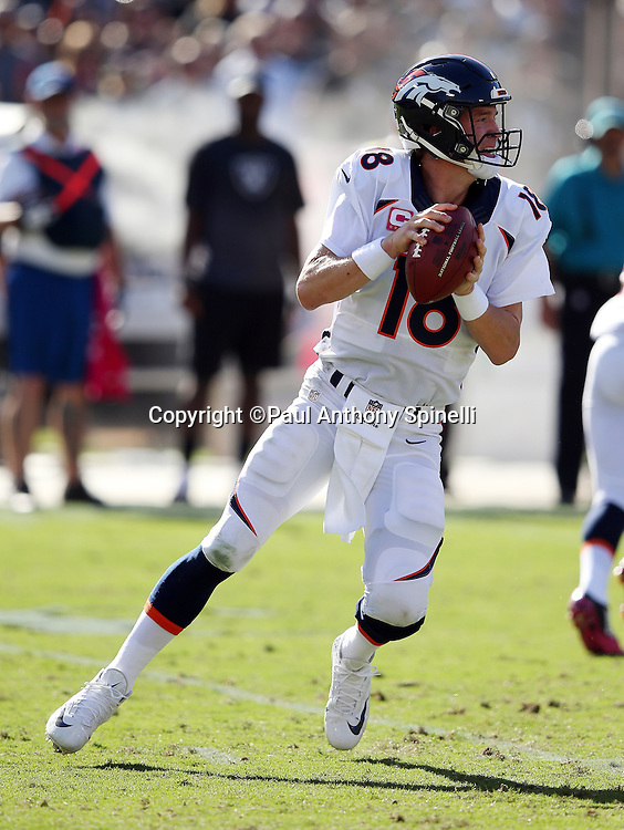 Denver Broncos quarterback Peyton Manning (18) drops back to pass during the 2015 NFL week 5 regular season football game against the Oakland Raiders on Sunday, Oct. 11, 2015 in Oakland, Calif. The Broncos won the game 16-10. (©Paul Anthony Spinelli)