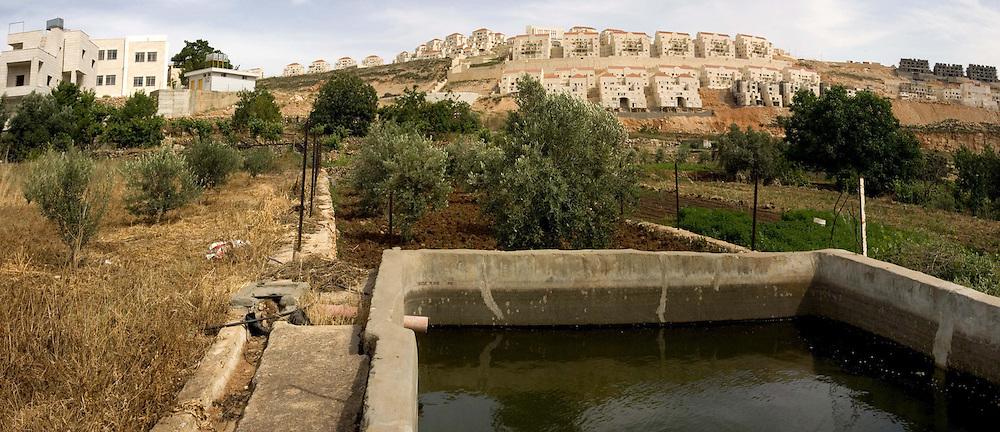 Wadi Fukin est un village de 1200 habitants, principalement des fermiers qui vendent leurs produits à Bethléem. Ils survivent grâce à une source locale mais le village voit son territoire menacé, prit entre la colonie juive Beitar Illit à la croissance exponentielle et la ligne verte en construction. Wadi Fukin, ouest de Bethléem, Territoires Palestiniens, mai 2011