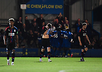 Football - 2019 / 2020 pre-season friendly - AFC Wimbledon vs. Crystal Palace<br /> <br /> Crystal Palace's Luke Dreher dejected as AFC Wimbledon's Tommy Wood scoring his side's injury time equalising goal, at Kingsmeadow Stadium.<br /> <br /> COLORSPORT/ASHLEY WESTERN