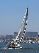 Sailing In Newport Harbor