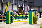 Bas Moerings - Hervesther<br /> The Dutch Masters - Indoor Brabant 2019<br /> © DigiShots