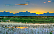 Medano Marsh Sunrise