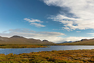 Scenic of lake along Denali Highway in Interior Alaska. Autumn. Morning.