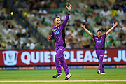 14th January 2019, Melbourne Cricket Ground, Melbourne, Australia; Australian Big Bash Cricket, Melbourne Stars versus Hobart Hurricanes; Johan Botha of the Hobart Hurricanes appeals for a wicket