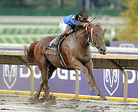 Curlin wins the Breeders Cup Classic at the Breeders Cup 2007 World Championships