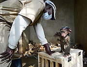 """Orphaned Baboon Is So Relieved To Meet Her Adoptive Mum <br /> <br /> After a mother baboon was killed for bushmeat, her little daughter was left all alone — and was likely going to be raised for meat herself.<br /> <br /> But everything changed when the baby, now named Missa, was discovered by park rangers in Garamba National Park in the Democratic Republic of the Congo.  The baby was in the hands of a poacher, who has since been arrested and charged for killing animals like Missa's mom.<br /> <br /> The babies her mother was killed for bushmeat and she was probably going to be raised and used for bushmeat herself,"""" Itsaso Vélez del Burgo Guinea, technical director of Centre de Rehabilitation des Primates de Lwiro (CRPL), <br /> <br /> People were so determined to save this traumatized baby baboon, that a pilot from the national park flew her to CRPL's rehabilitation center, where she'd be able to regain her strength. With the help of Africa Parks rangers, she was able to ride in the helicopter with a tourist who was coming to CRPL for a visit. Sadly, the bushmeat trade in Africa kills thousands of primates like Missa and her mum each year, devastating families and destabilizing whole ecosystems.  When Missa arrived, it was clear the trauma of her plight had left its mark on her. So rescuers decided to introduce her to someone who could relate.<br /> <br /> An older Baboon named Grace, who was rescued from a hotel where she was kept all alone in a small cage, also calls CRPL home. When Missa met Grace, the bond was instantaneous. And Missa, newly orphaned, was clearly relieved to see someone who reminded her of her mum. """"Two dramatic and sad lives are now united,"""" Itsaso said.<br /> ©Centre de Rehabilitation des Primates de Lwiro/Exclusivepix Media"""