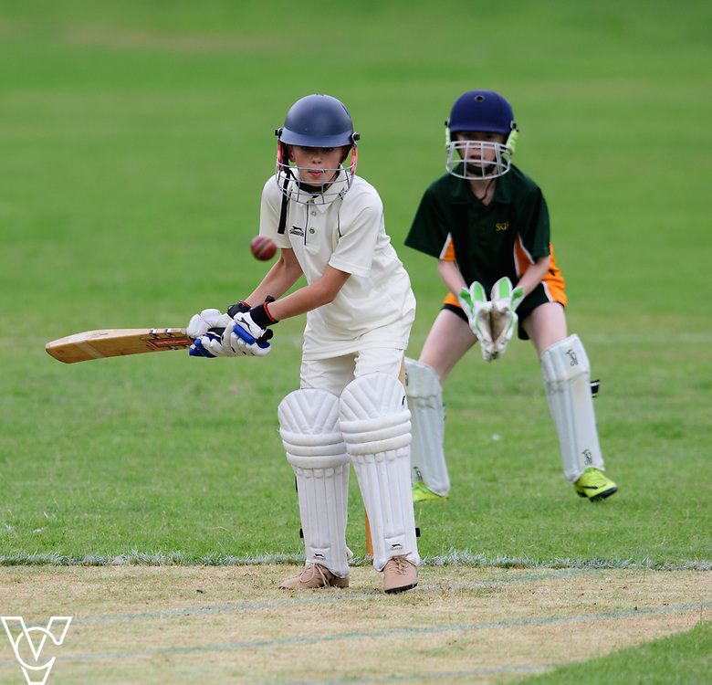 DRET cricket and rounders cup 2017<br /> <br /> Picture: Chris Vaughan Photography <br /> Date: July 13, 2017