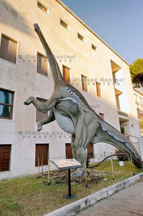 Roma 30 Dicembre 2014<br /> &quot;Dinosauri in Carne e Ossa&quot;, mostra di dinosauri e altri animali preistorici estinti, a grandezza naturale, allestita dall' Associazione paleontologica ambientale, all'Universit&agrave; La Sapienza di Roma. La mostra sara aperta fino al 31 Maggio 2015. La scultura di un Diplodocus longus.<br /> Rome December 30, 2014<br /> &quot;Dinosaurs in Flesh and Bones&quot;, an exhibition of dinosaurs and other prehistoric animals extinct, to life-sized, prepared by Association paleontological environmental, a La Sapienza University of Rome. The exhibition will be open until May 31, 2015. The sculpture of Diplodocus longus.