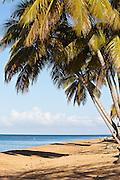 Corcega Beach in Rincon, Puerto Rico.