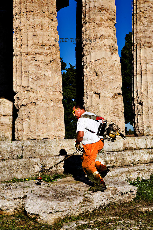 Italy, Magna Graecia : Paestum temples : temple of Athena or Ceres; workman wielding a weed cutter along the temple steps