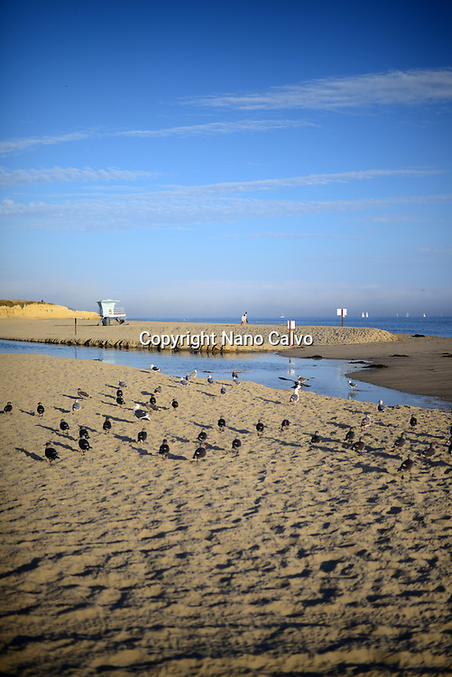 Santa Cruz state beach, California.