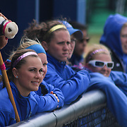 Delaware bench cheering in the first inning of a NCAA Non Conference Regular season game between The University Of Delaware and The Peacocks of Saint Peter's Wednesday, April 23, 2014, at UD Softball Stadium in Newark Delaware.