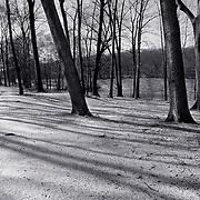 Tibbets Park Lakeside