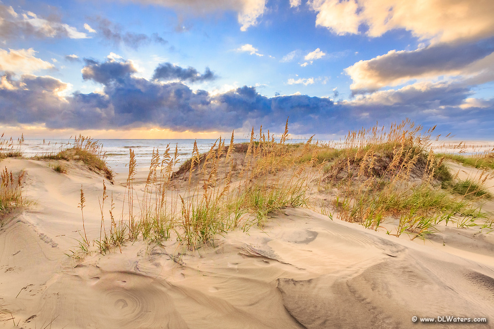Sunrise beach dunes and seaoats in Corolla on the Outer Banks of NC.
