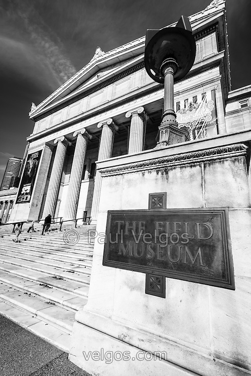 Black an white photo of The Field Museum of Natural History in Chicago, Illinois. The Field Museum is one of the most popular things to see in Chicago and is a top Chicago attraction.