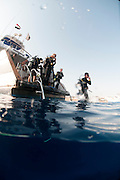Divers enter the water from a liveaboard boat used for diving safaris Ras Mohammed National Park, Red Sea, Sinai, Egypt,