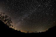 10月2日,在美国洛杉矶以东的约书亚树国家公园,摄影师用长时间曝光拍摄到的银河。 新華社發 (趙漢榮攝)<br /> The Milky Way are seen above the Joshua Tree National Park in Twentynine Palms, California, the United States, October 2, 2016. (Xinhua/Zhao Hanrong)(Photo by Ringo Chiu/PHOTOFORMULA.com)<br /> <br /> Usage Notes: This content is intended for editorial use only. For other uses, additional clearances may be required.