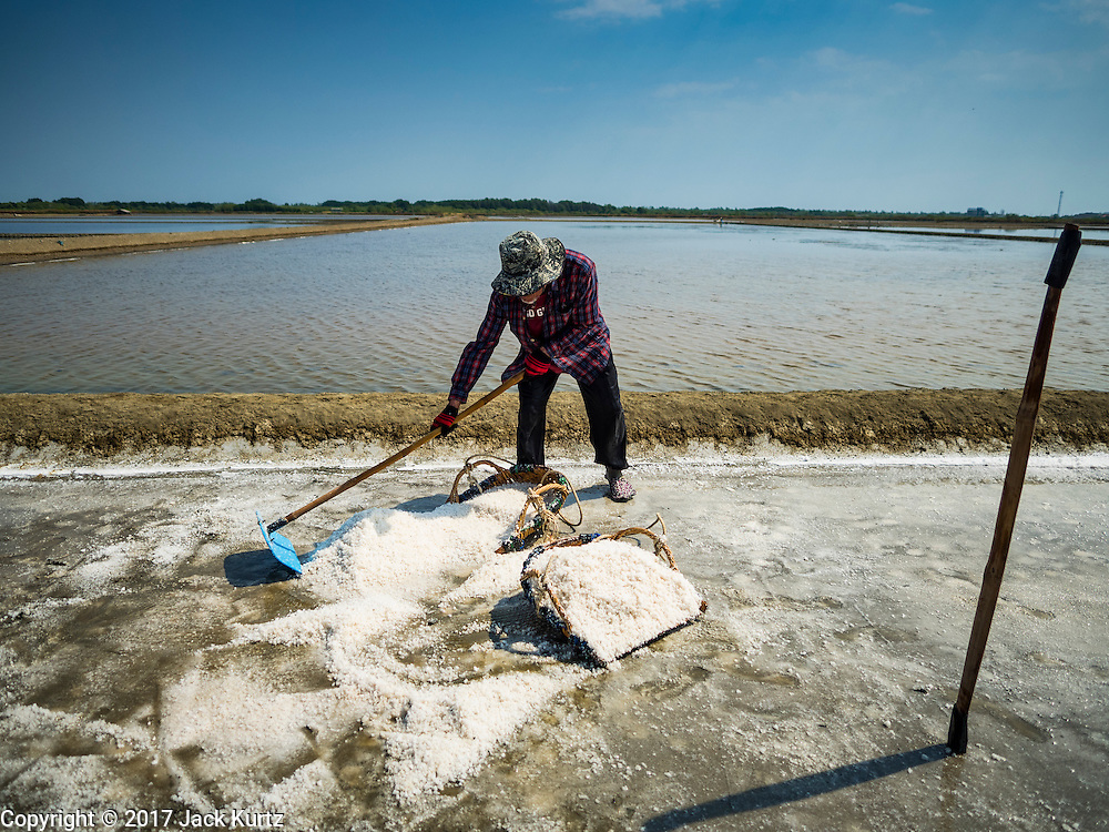 22 FEBRUARY 2017 - BAN LAEM, PETCHABURI, THAILAND:  A worker pushes salt into his basket during the salt harvest in Petchaburi province of Thailand, about two hours south of Bangkok on the Gulf of Siam. Salt is collected in coastal flats that are flooded with sea water. The water evaporates and leaves the salt in large pans. Coastal provinces south of Bangkok used to be dotted with salt farms, but industrial development has pushed the salt farms down to remote parts of Petchaburi province. The harvest normally starts in early February and lasts until early May, but this year's harvest was delayed by a couple of weeks because of unseasonable rain in January that flooded many of the salt collection ponds.   PHOTO BY JACK KURTZ