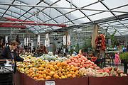 Försäljning hos Bauman Farms, Gervais, Oregon, USA<br /> Foto: Christina Sjögren