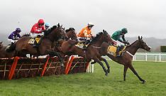 Festival Trials Day - Cheltenham Racecourse - 26 January 2019