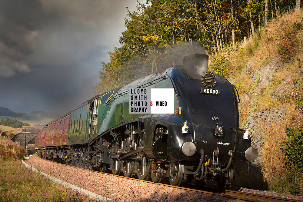 Picture of the Union of South Africa speeding it's way to Tweedbank. Sunday  18th Oct will be the last chance to see this train on the Edinburgh to Tweedbank Borders route.