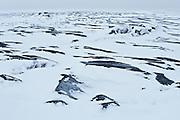 The frozen rocky shoreline of Hudson Bay<br /> Churchill<br /> Manitoba<br /> Canada
