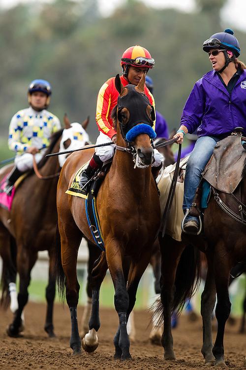 June 27 2015: Hoppertunity at the Santa Anita Gold Cup at Santa Anita Park in Arcadia CA. Alex Evers/ESW/CSM