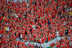 LYON, FRANCE - Wednesday, July 6, 2016: Wales supporters look dejected during the UEFA Euro 2016 Championship Semi-Final match against Portugal at the Stade de Lyon. (Pic by Paul Greenwood/Propaganda)